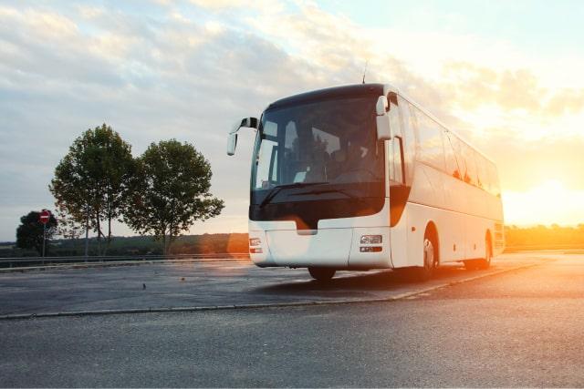 חברת אוטובוסים מומלצת