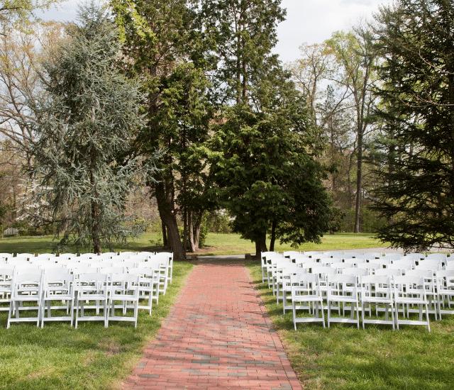 חתונה בטבע בצפון